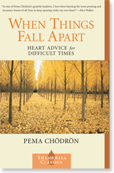 pema book when things fall apartt