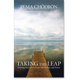 pema book taking the leap