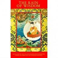Rain-of-Wisdom