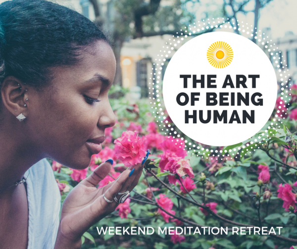 Los Angeles Meditation Retreat - Art of Being Human - Level 1 at Shambhala Meditation Center in Eagle Rock